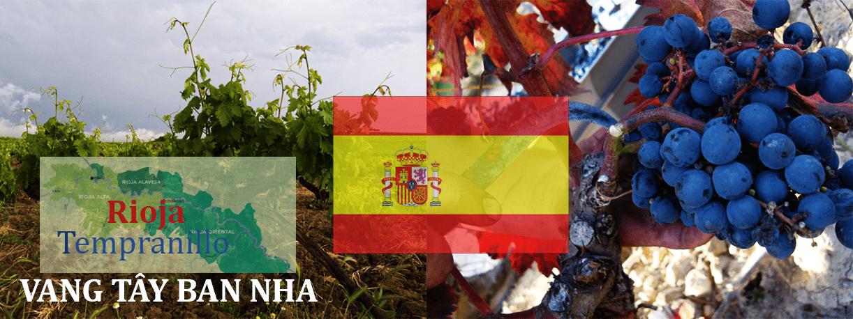 Địa chỉ bán rượu vang Tây Ban Nha
